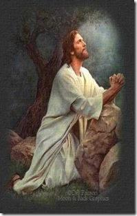 Salmos-46-10